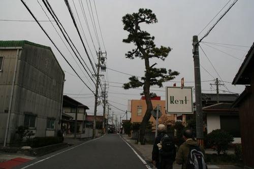 IMG_4513 東海道名残の一本松