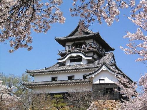 800px-Castle_in_Inuyama[1]