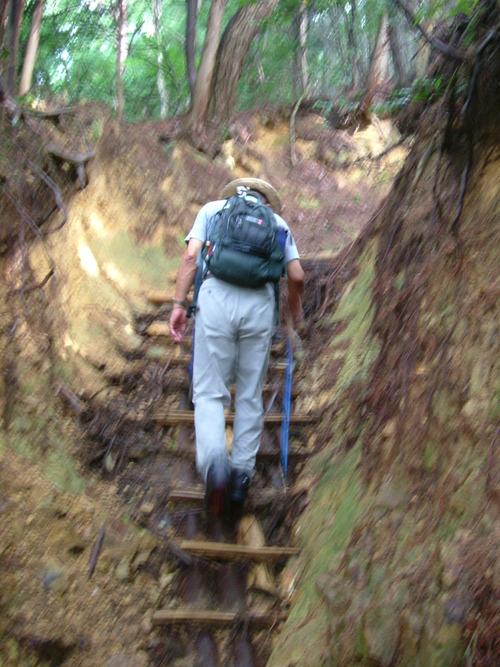DSCF1982 深くえぐれた道を登る