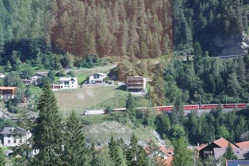 2010-08-29 031
