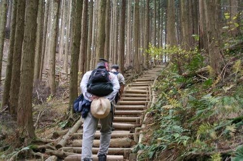 IMG_1268 急な木道を登る