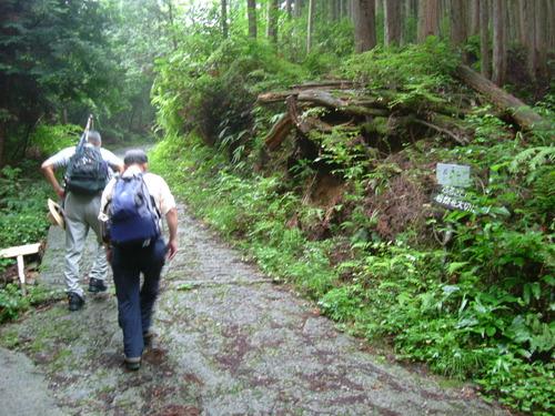 DSCF1977 40分ほど歩いて、岩湧山方面へ
