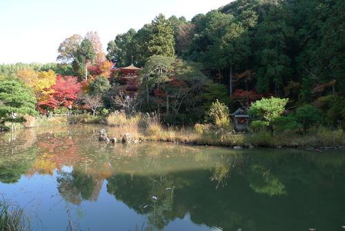 1129037 浄瑠璃寺