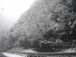 IMG雪景色0001