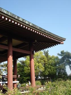 中宮寺(奈良)
