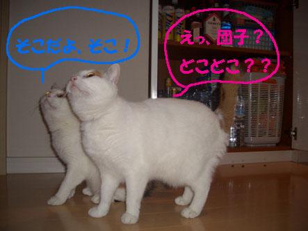 img20071001_2.jpg