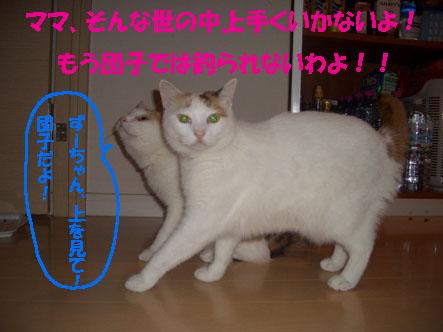 img20071001_1.jpg
