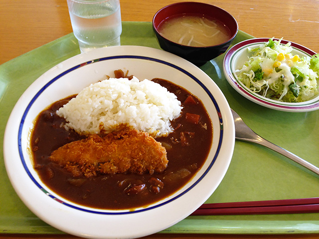 Fried Salmon Curry with Rice