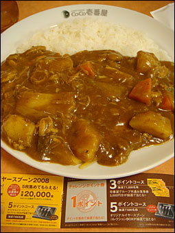 Grand Mother Curry with Stewed Chicken and Chesse