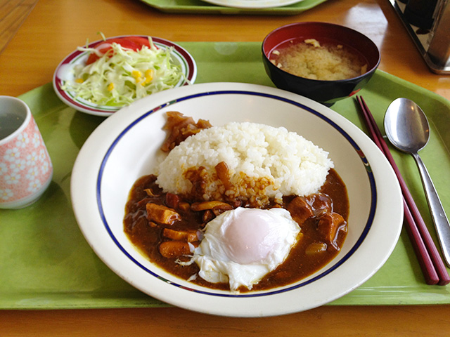 Chicken and Soft-Boiled Egg Curry with Rice