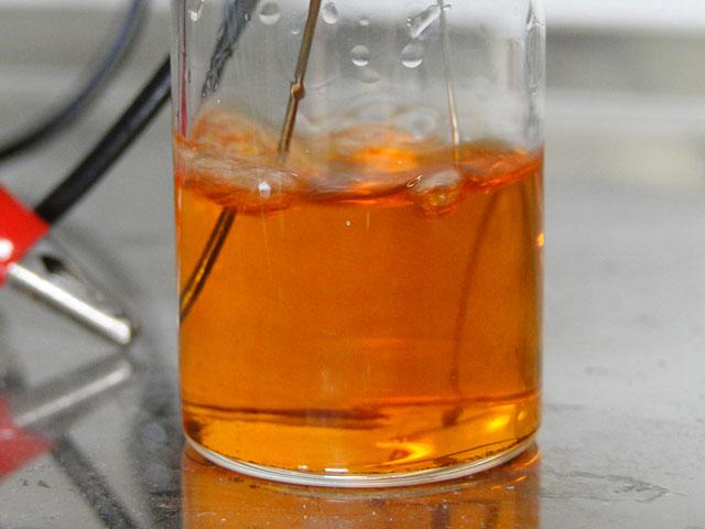Astaxanthin in Ethanol