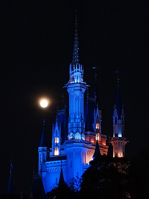 Cindellera Castle with Moon