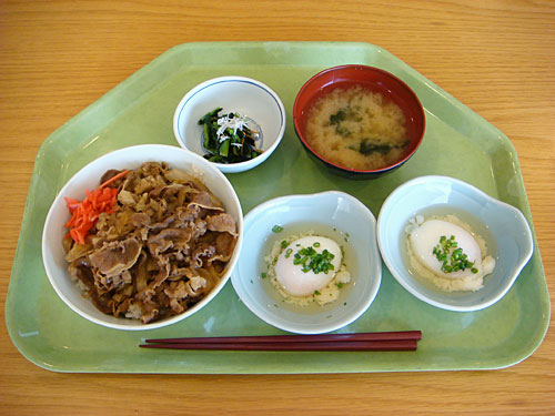 Beef Bowl and Soft-Boiled Eggs