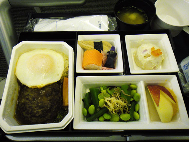 1st Airline Meal