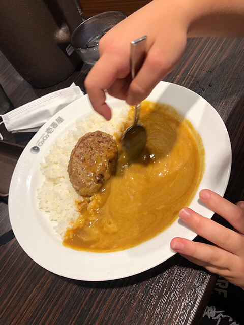 Small Cheese Curry with Humburger