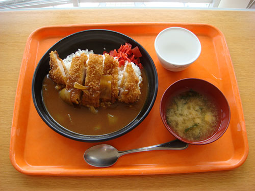 Miso Cutlet Curry