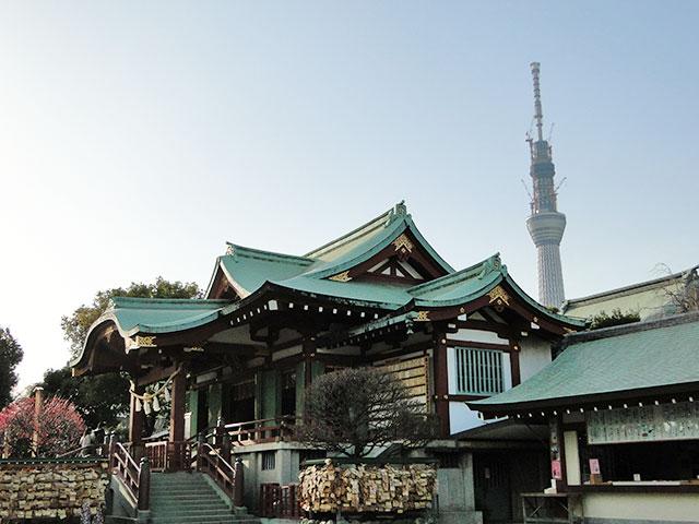 TOKYO SKY TREE from Kameido Tenjin Shrine