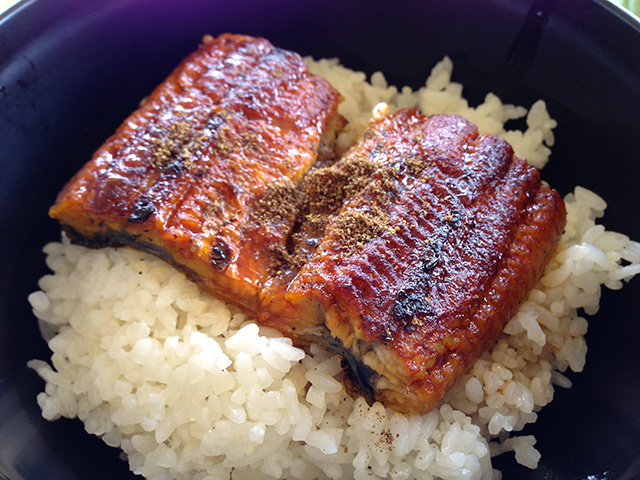Eel Teriyaki on the Rice