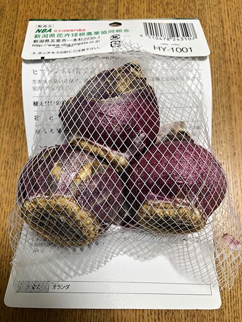 Hyacinth 191206