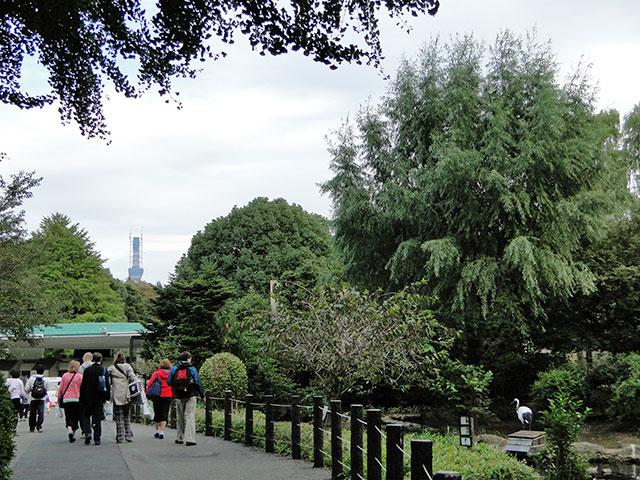TOKYO SKY TREE from Ueno Zoo