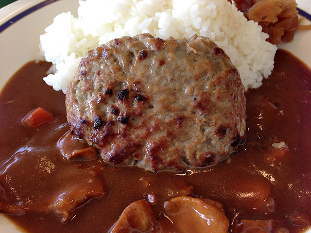 Hamburg Steak Curry and Rice