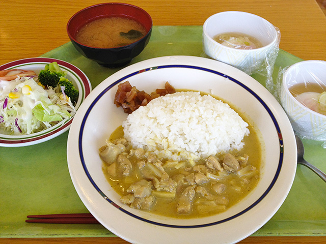 Green Curry and Rice Thai Style