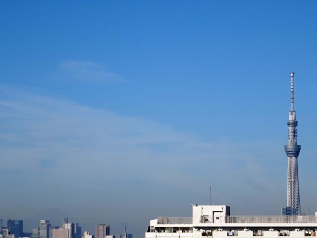 Mt. Fuji and TOKYO SKYTREE