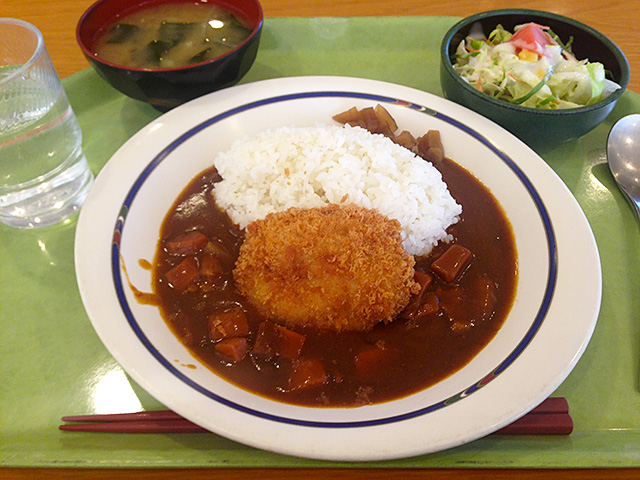 Chicken Cutlet and Curry with Rice