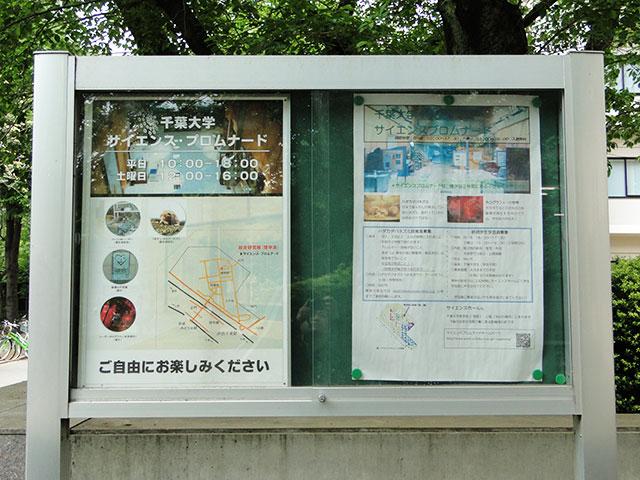 Science Promenade