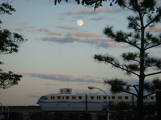 White Moon and Disney Resort Line