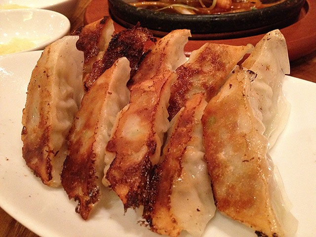 Fried Gyoza Dumplings