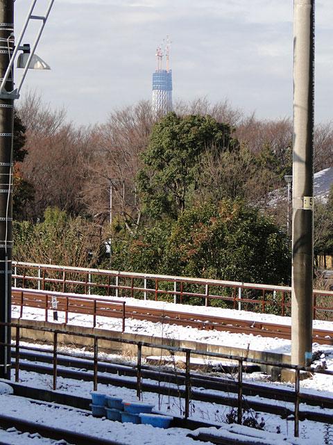 TOKYO SKY TREE with Snow