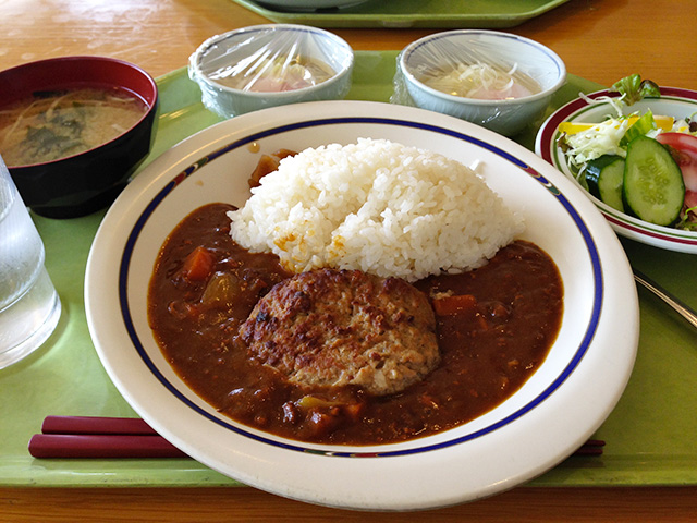 Hamburg Steak Curry with Rice and Soft-Boiled Eggs