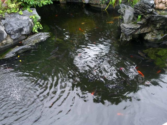 噴水の池 3_edit