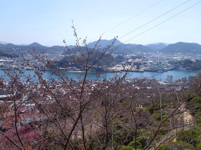 千光寺山から尾道水道を望む 5_edit