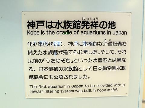 神戸は水族館発祥の地_edit