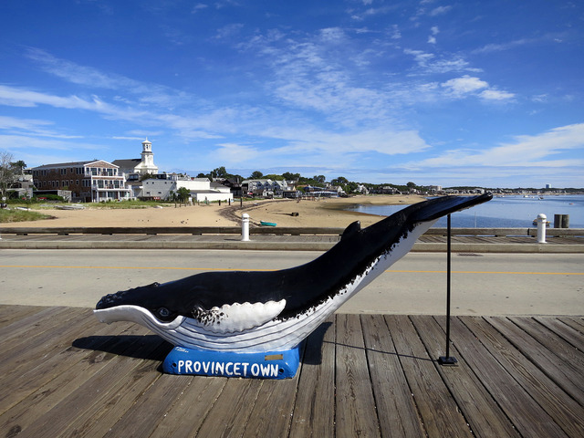 MacMillan Pier のクジラのオブジェ_edit