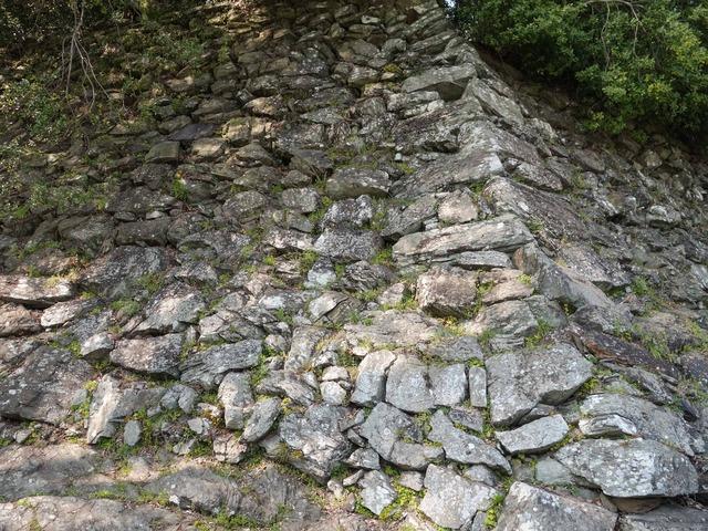 松の丸跡の石垣(野面積み) 1_edit