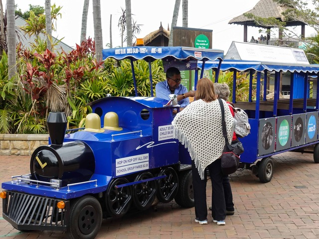 Zoo Train_edit