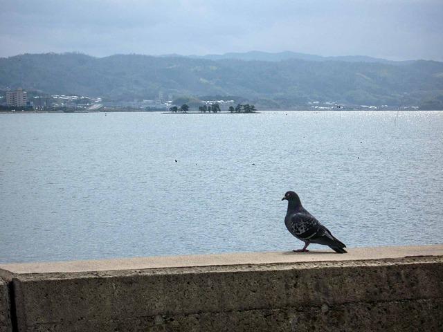 宍道湖 4_edit