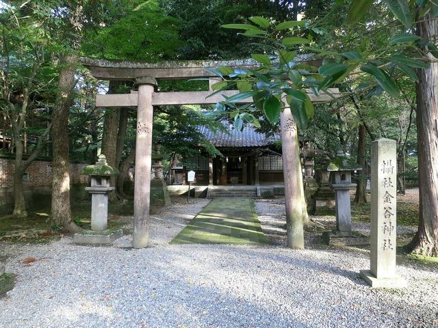 金谷神社 1_edit