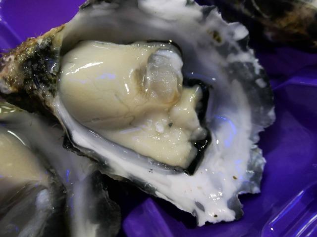 Coffin Bay Oyster 5_edit