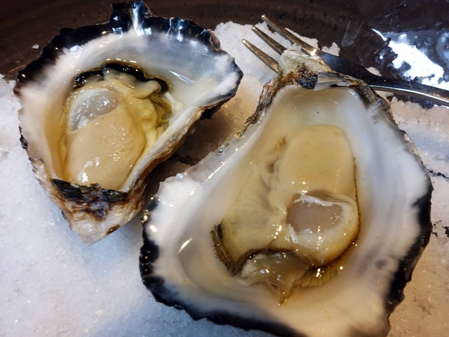 Natural Sydney Rock Oysters 5_edit
