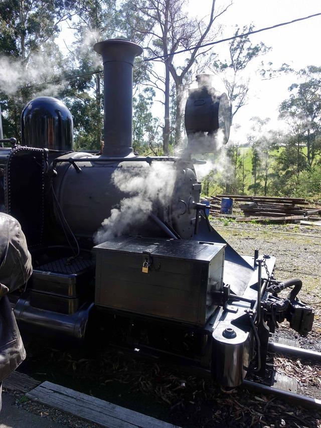 機関車(Menzies Creek 駅) 7_edit