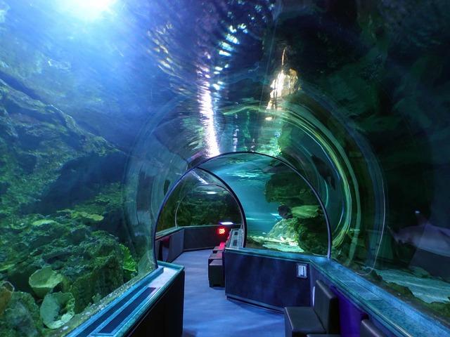 水中トンネル 20_edit