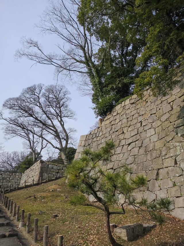 三の丸石垣 4_edit