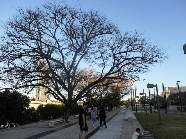 Qeii Park 1_edit