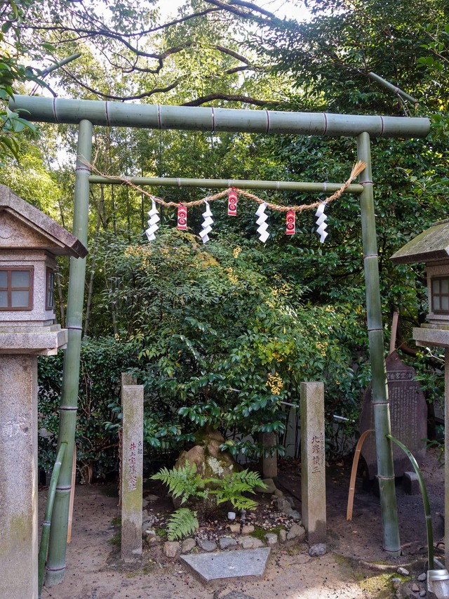 竹の鳥居_edit
