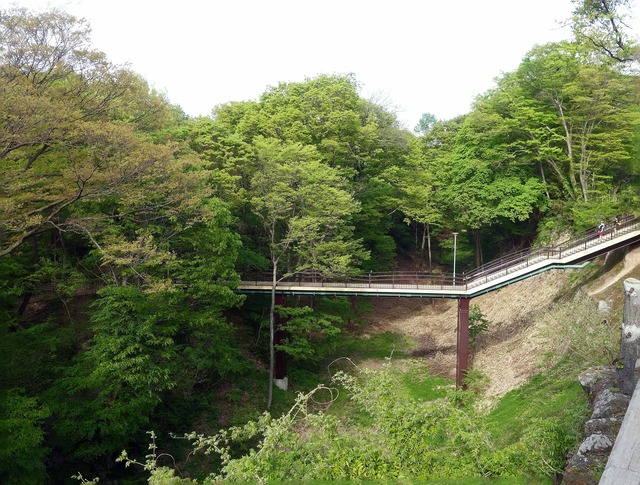 水の手展望台から酔月橋を望む 1_edit