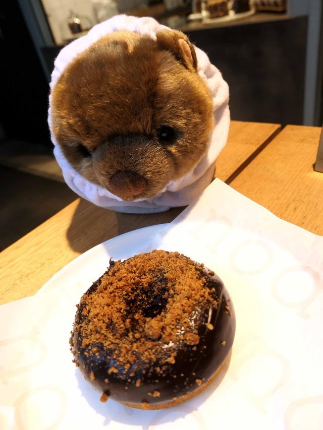 pumpkin maple & gingerbread crumb とホコ_edit